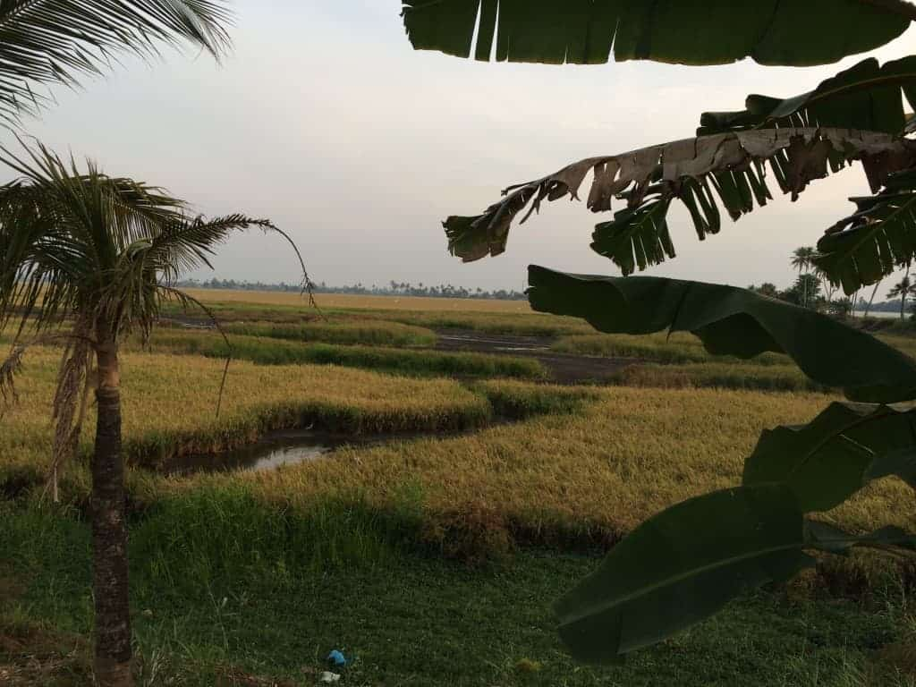 Alappuzha, Kerala, India