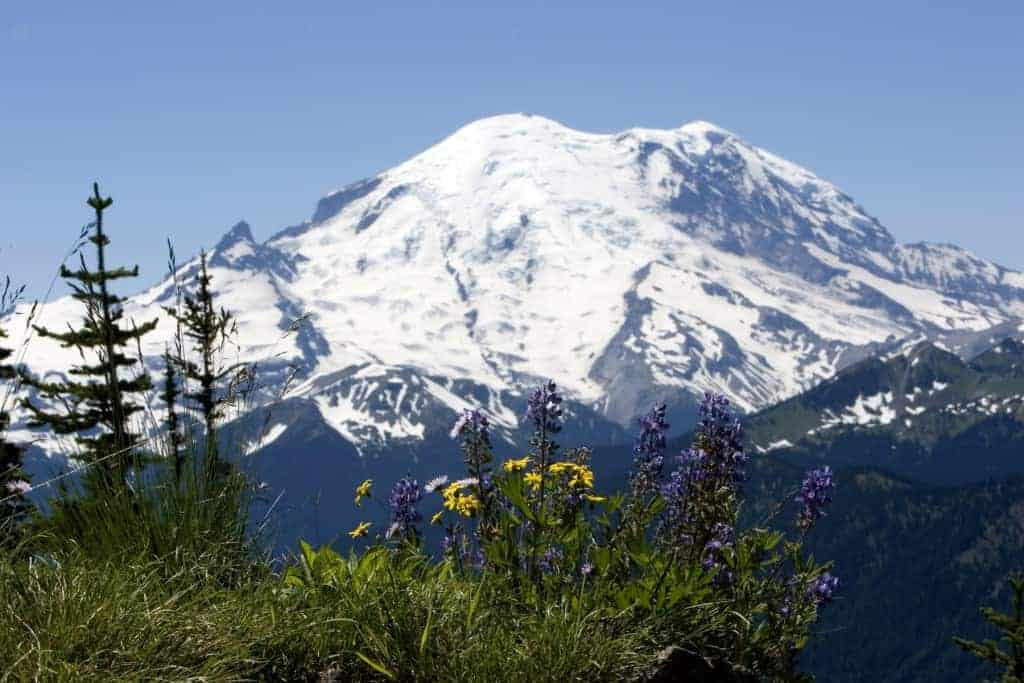 Mt Rainier (Washington)