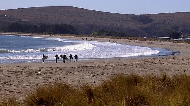 Doran Beach, Sonoma, California