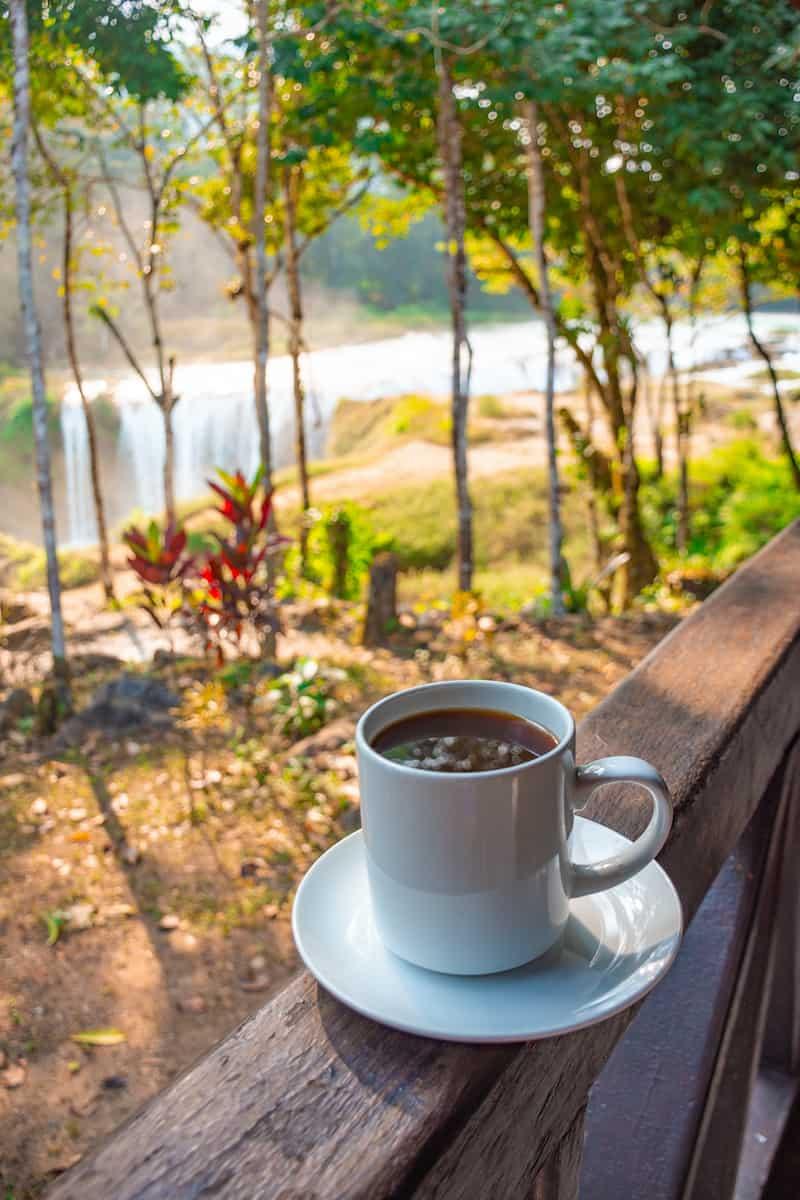 Ruta del café Veracruz Chiapas Puebla, Turismo Rural